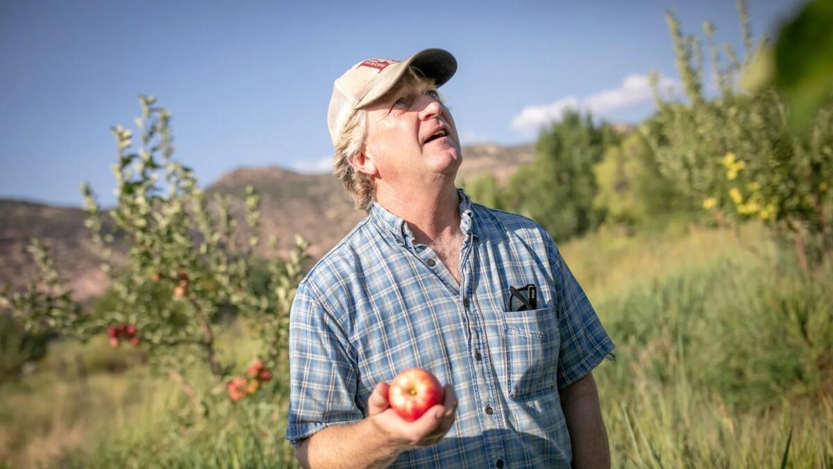 imengine.public.prod.dur.navigacloud The Montezuma Orchard Restoration Project preserves history of apples for the future